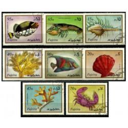Émiratos Árabes Unidos (Fujeira). Serie Fauna Marina