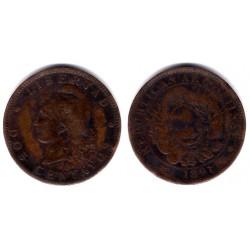 (33) Argentina. 1891. 2 Centavos (BC)