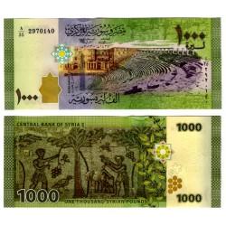 (116) Siria. 2013. 1000 Lira (SC)