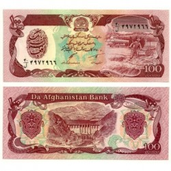 (58c) Afganistán. 1991. 100 Afghanis (SC)