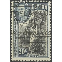 Ceylon Británica. 1938. 20 Cents. Plucking Tea