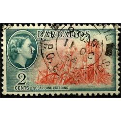 Barbados. 1954. 2 Cents. Suga Cane Breeding