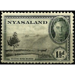 Nyasaland. 1½ Pound. Tea Estate, Mlanje Mountain