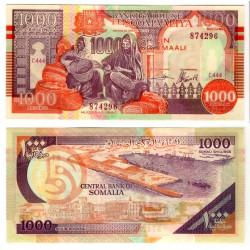 (R10) Somalia (Puntlandia). 1999. 1000 Shillings (SC)